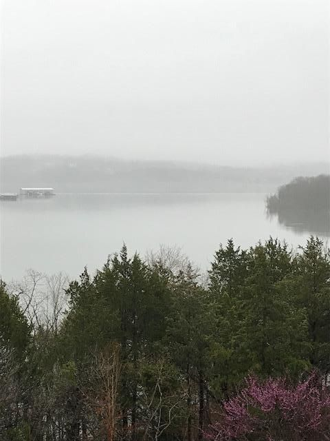 228 Seven Cove Ln #404, Kimberling City, MO - USA (photo 1)