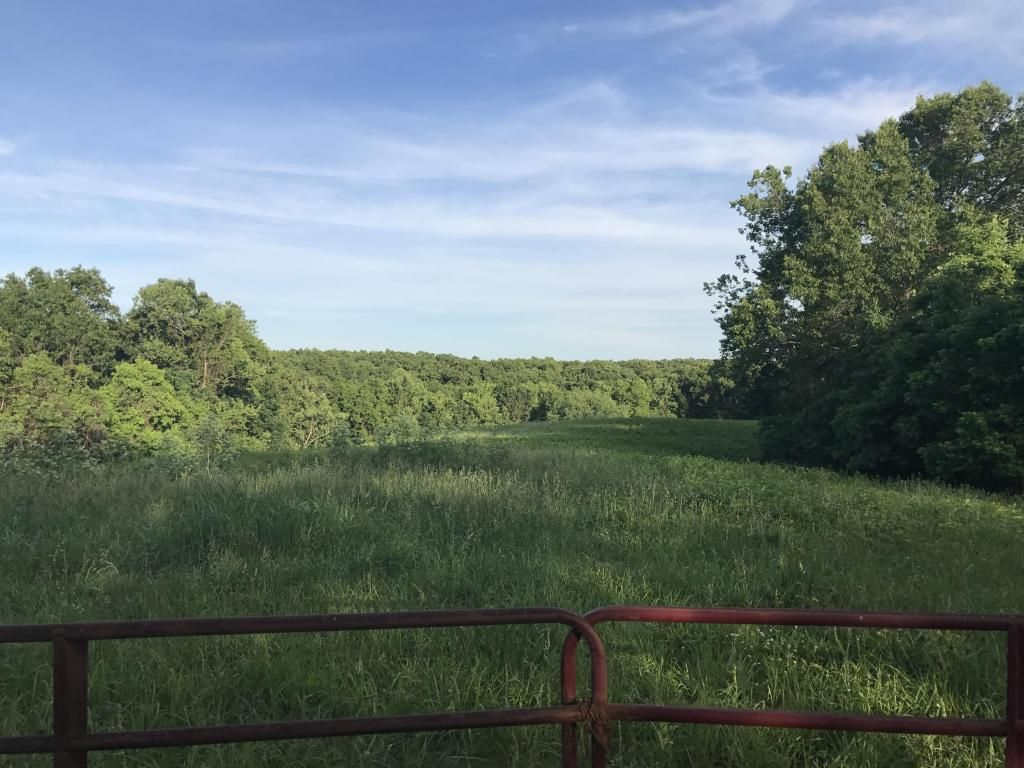 0 Two Rivers Rd, Highlandville, MO - USA (photo 1)